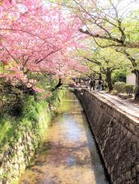 Kyoto Voie de la philosophie